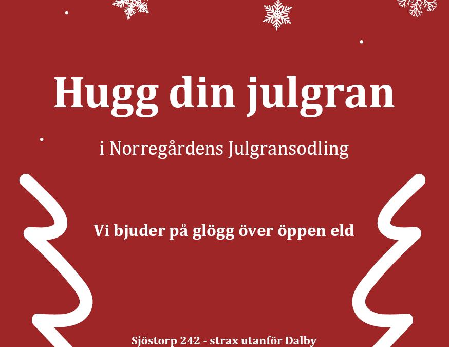 Hugg din egen julgran!