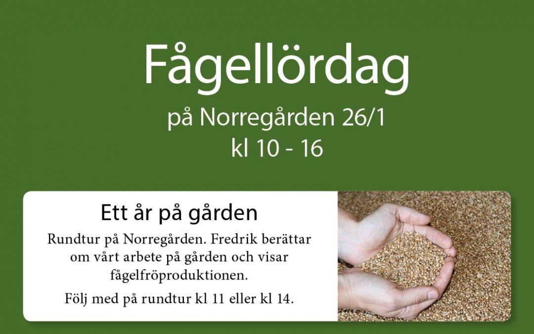 Fågellördag 26/1 på Norregården